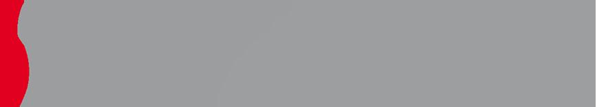 SPEKTRUM Tel.: +49 621 626268 Logo